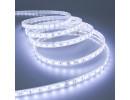 LEDStrips